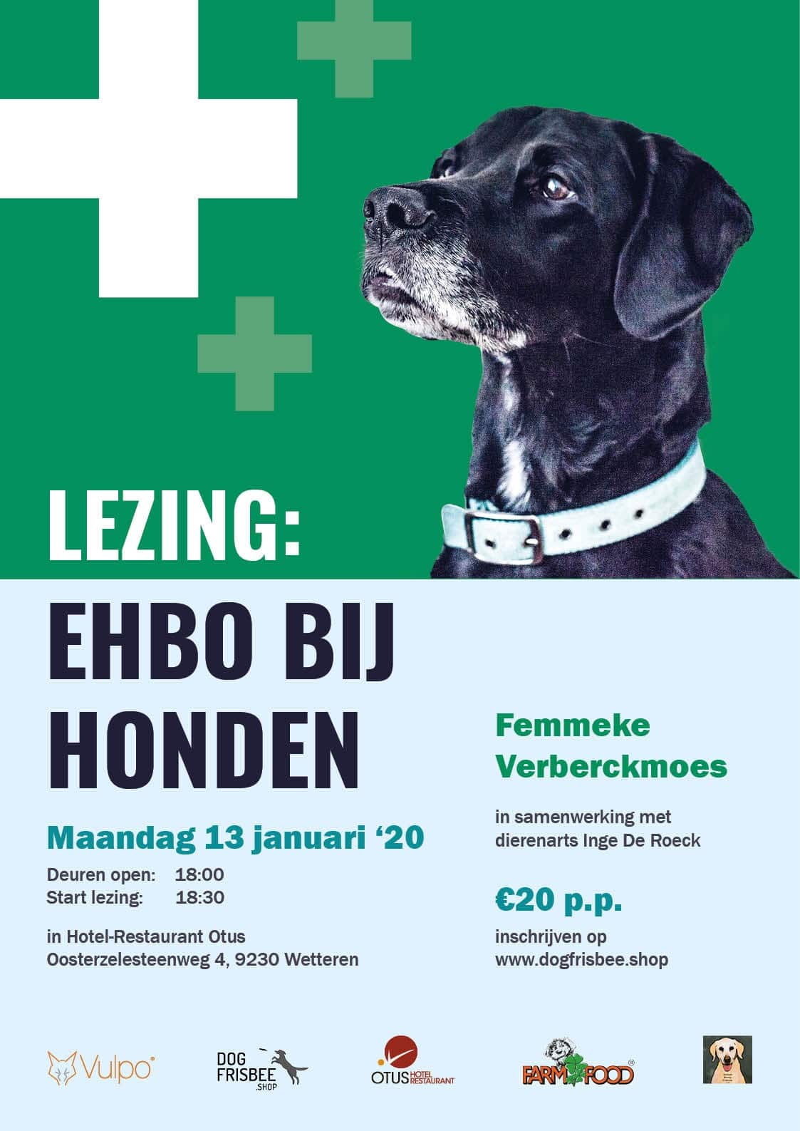 Featured image for Lezing: EHBO bij honden