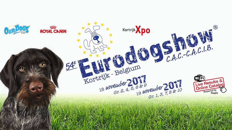 Featured image for Eurodogshow 2017