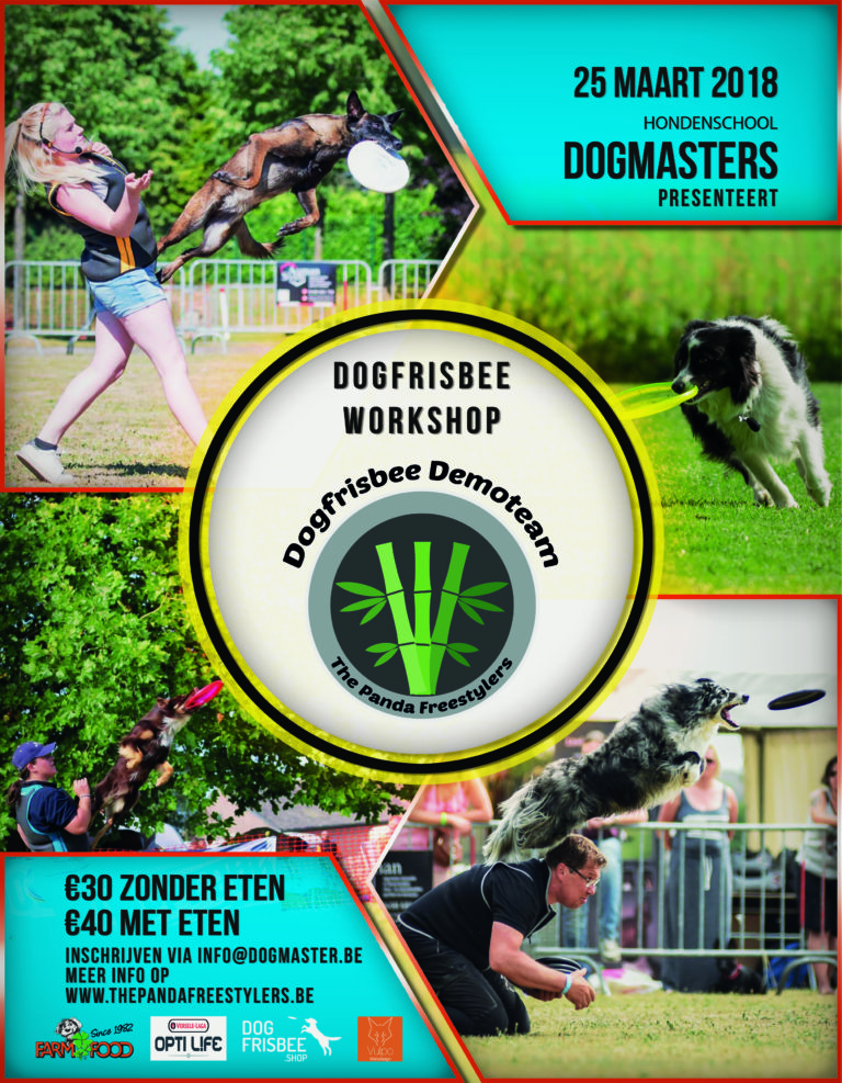 Featured image for Dogfrisbee workshop